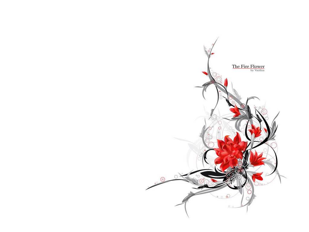 Огненные красные цветы на белом фоне