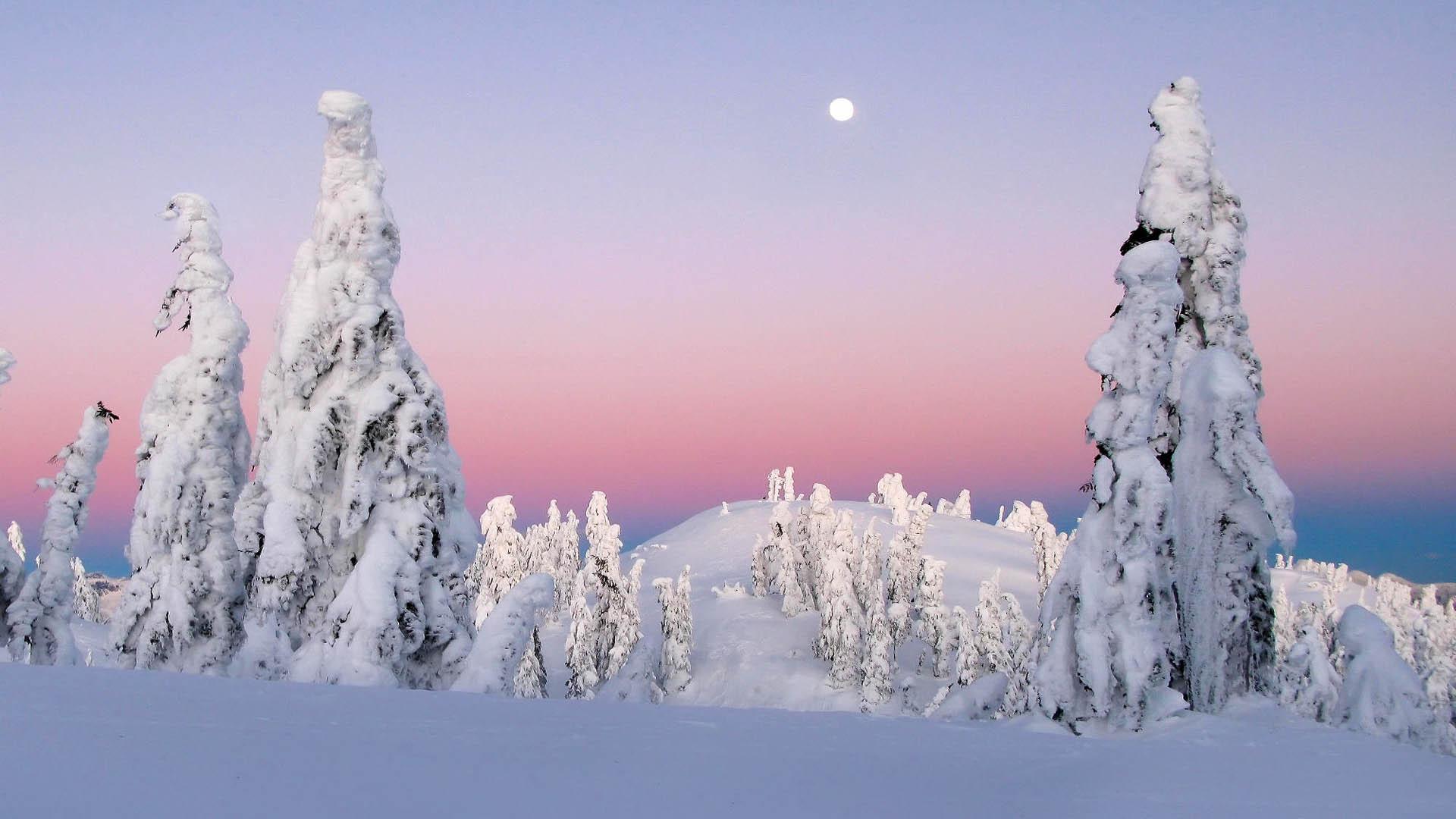 Картинка красивый зимний вечер