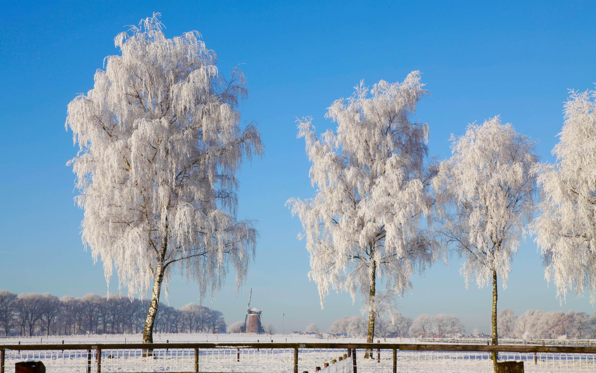 Зимний пейзаж картинки зима
