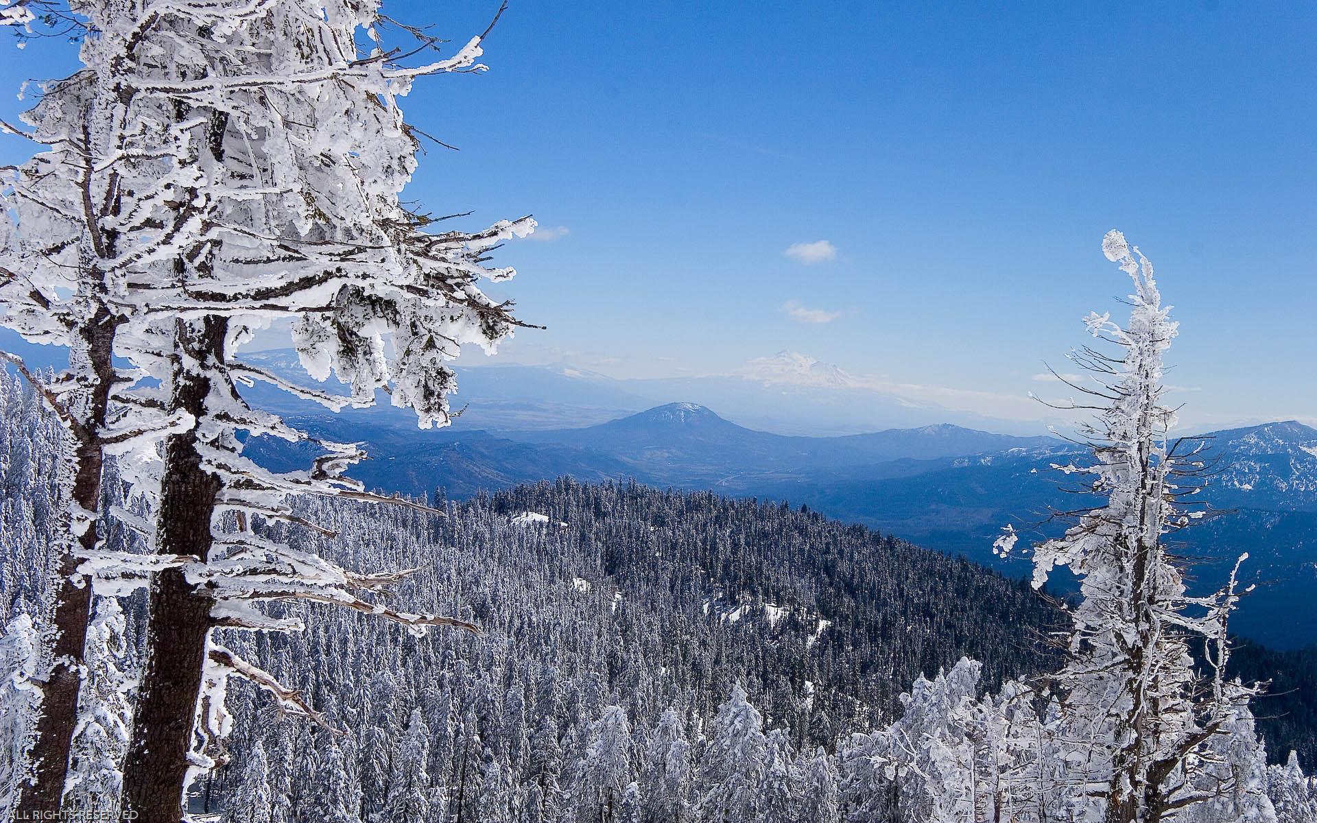 Картинка следующая картинка зимний